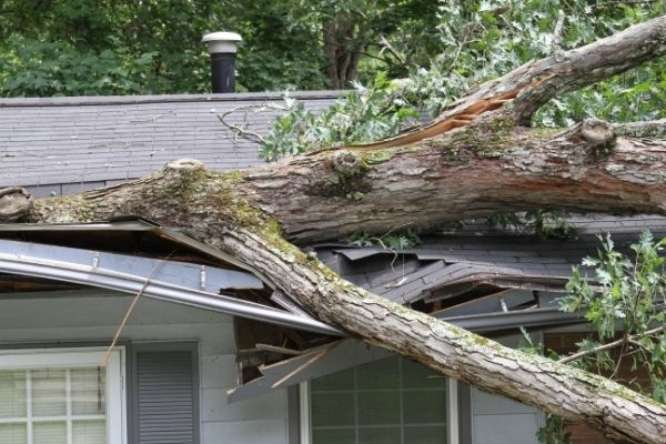 protecting your home from natural disasters